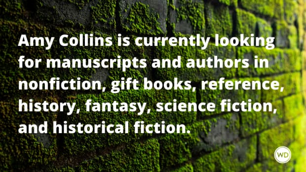 new_agent_alert_amy_collins_talcott_notch_literary_services
