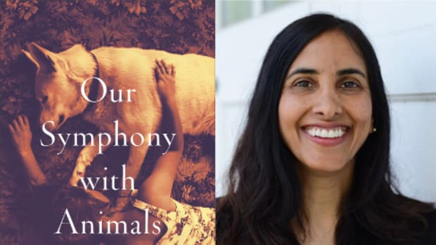 Aysha Akhtar Our Sympathy With Animals