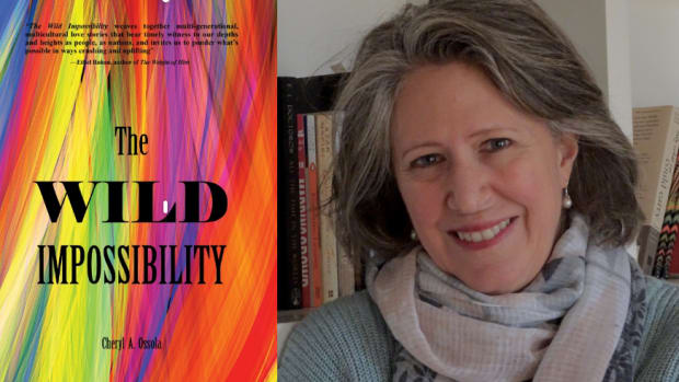 The Wild Impossibility by Cheryl A. Ossola