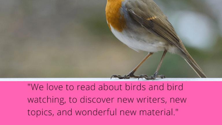 Bird Watcher's Digest: Market Spotlight