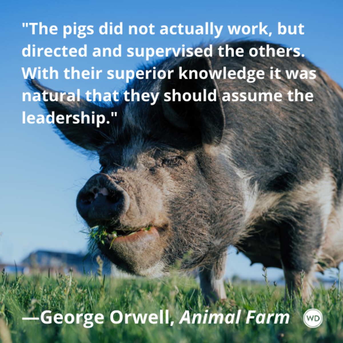 animal_farm_by_george_orwell_quotes_the_pigs_did_not_actually_work_but_directed_and_supervised_the_others