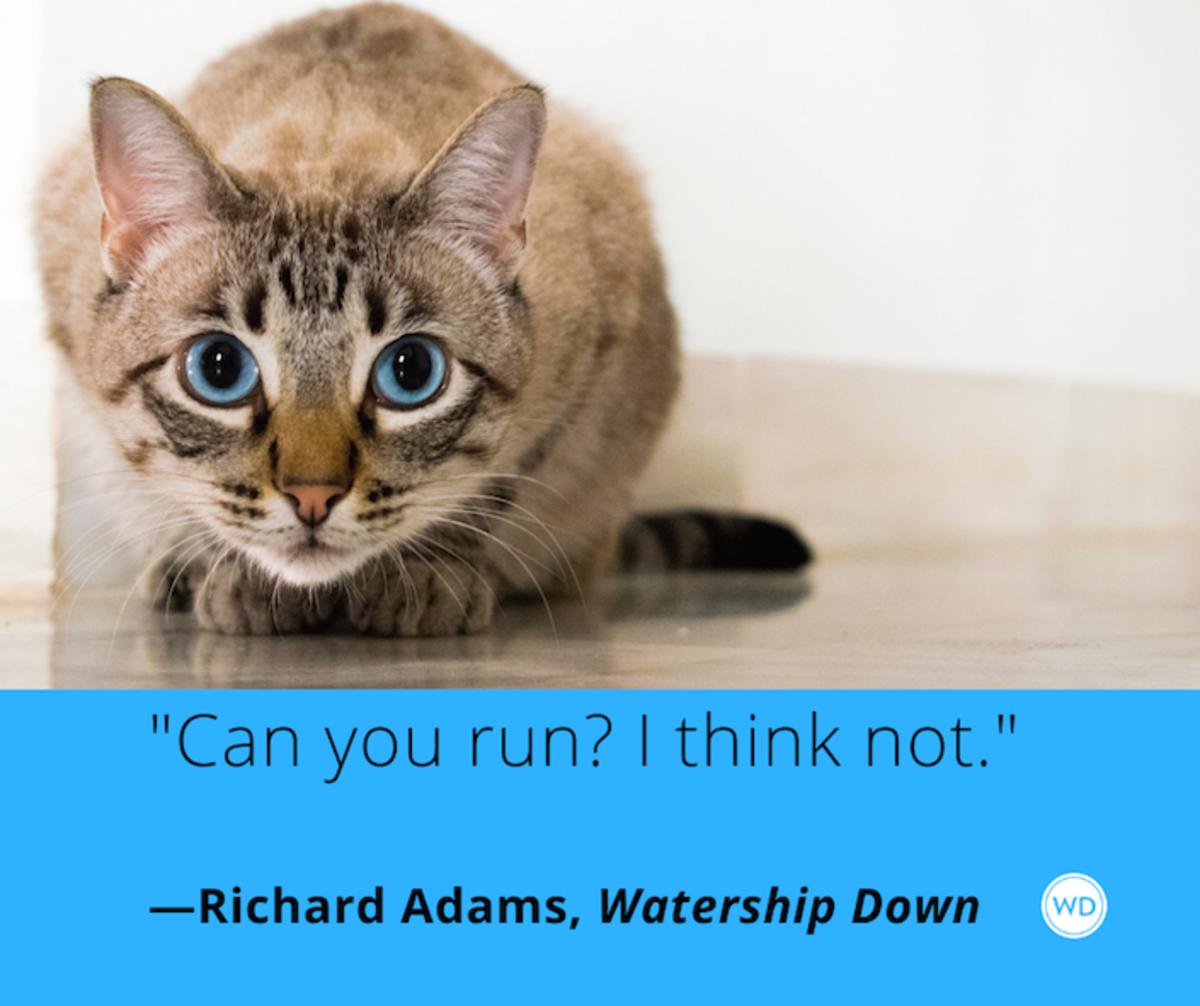 richard_adams_watership_down_quotes_can_you_run_i_think_not