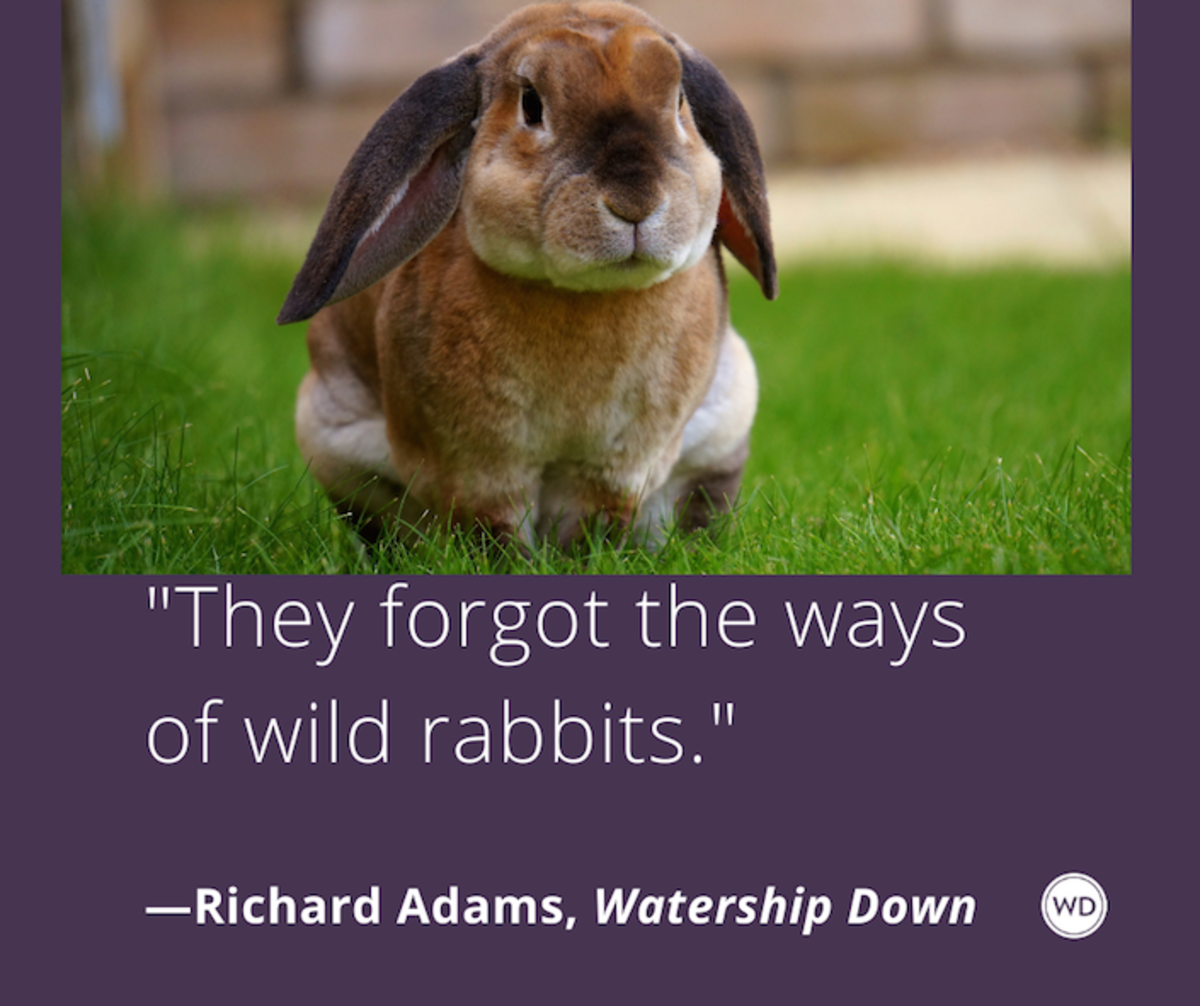 richard_adams_watership_down_quotes_they_forgot_the_ways_of_wild_rabbits