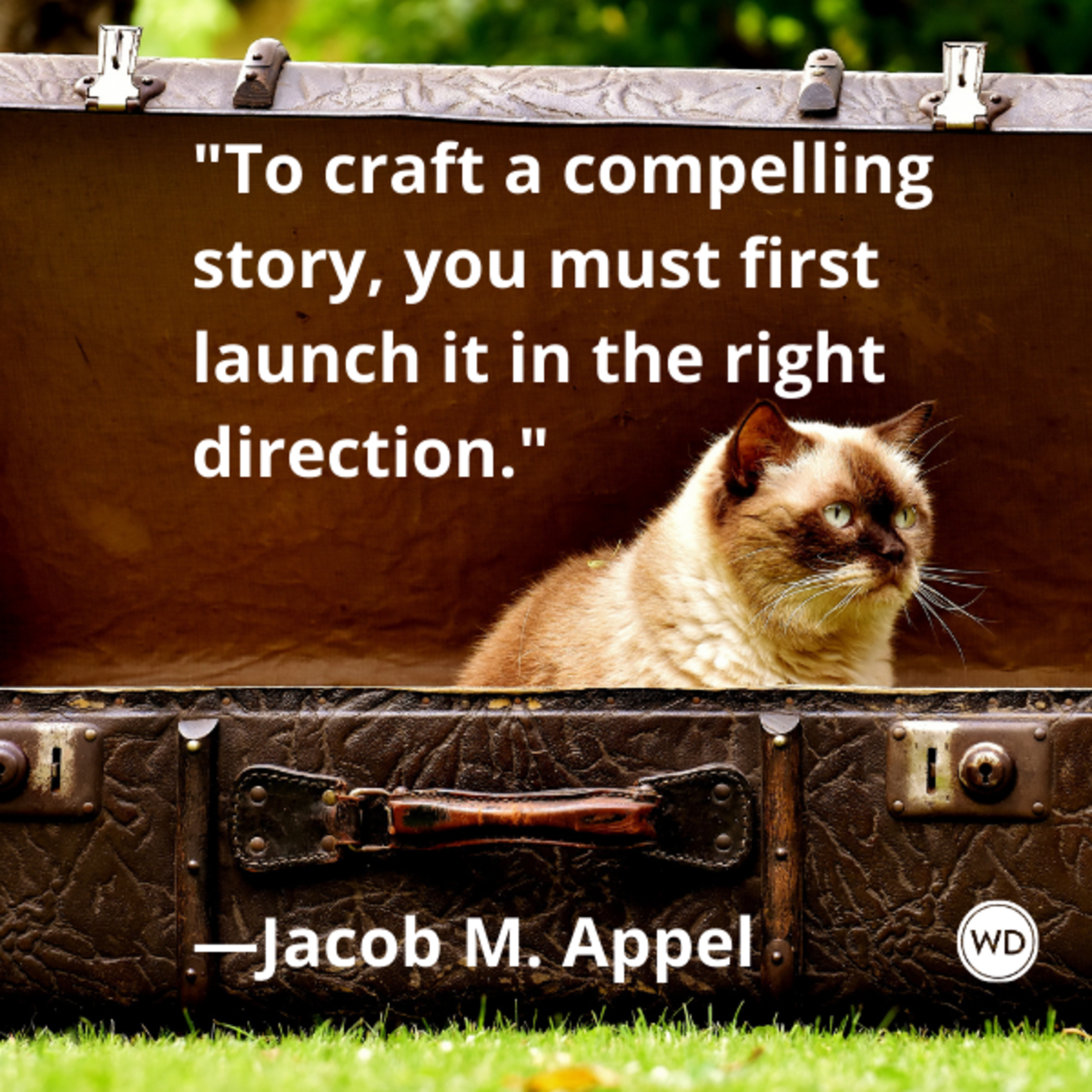jacob_m_appel_quotes_to_craft_a_compelling_story_you_must_first_launch_it_in_the_right_direction
