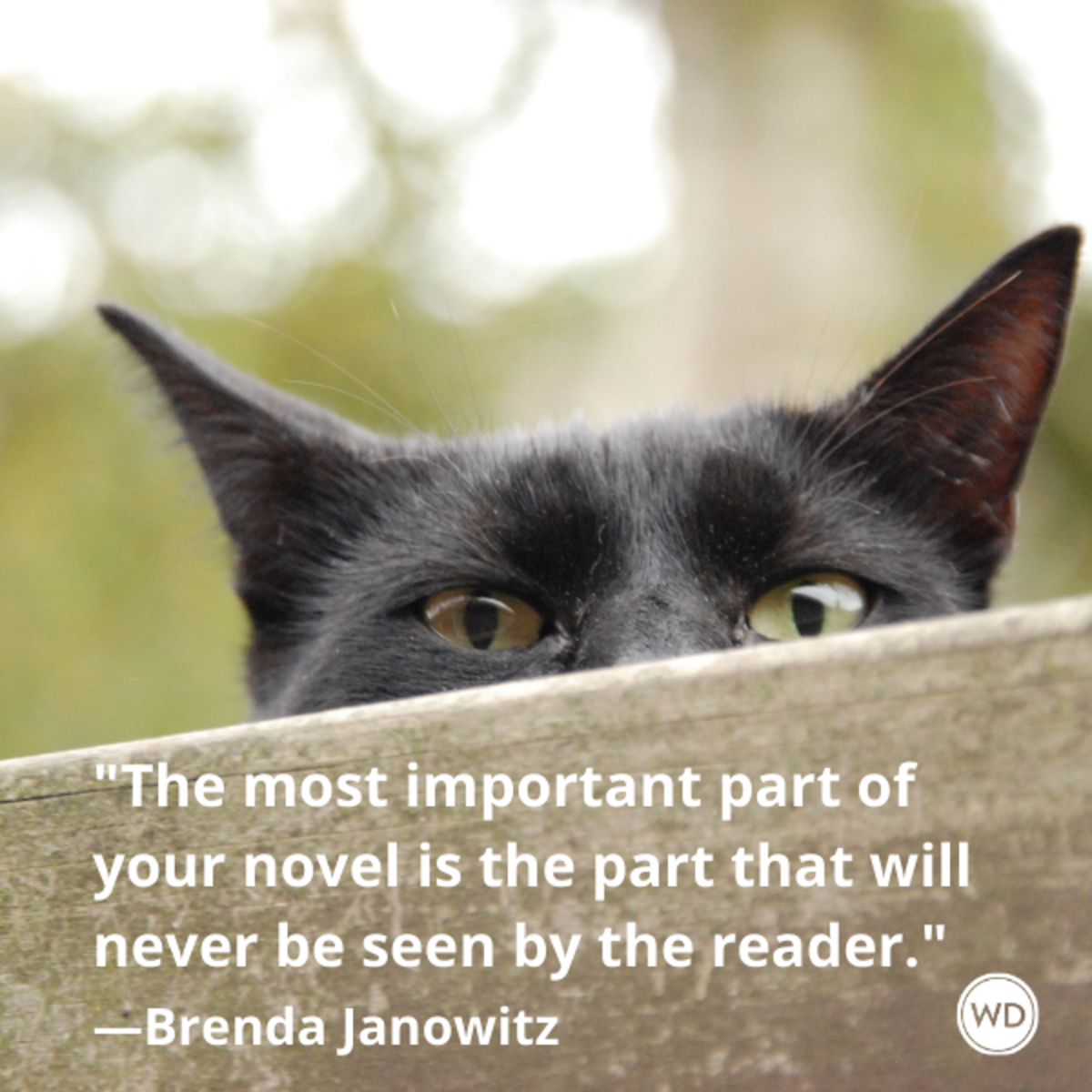 brenda_janowitz_quotes_the_most_important_part_of_your_novel_is_the_part_that_will_never_be_seen_by_the_reader_writing_advice_with_cats