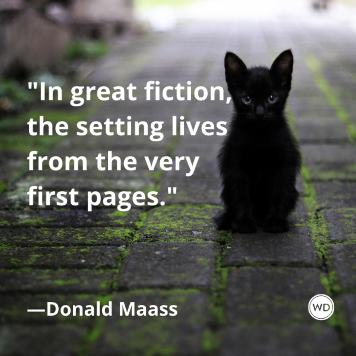 donald_maass_quotes_in_great_fiction_the_setting_lives_from_the_very_first_pages_cats_fiction