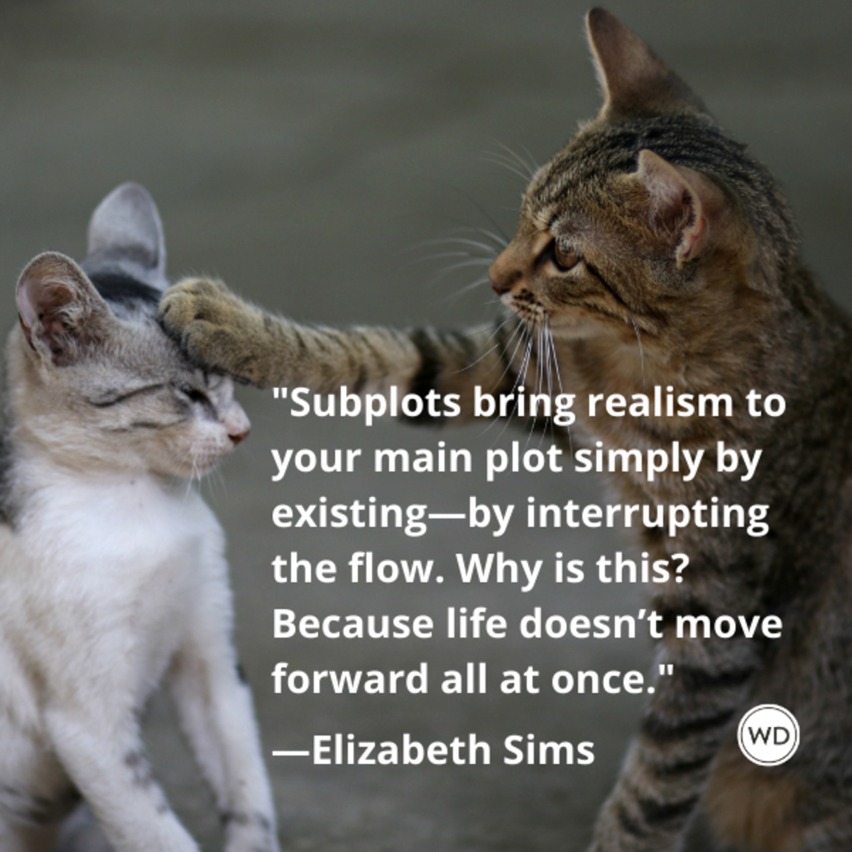 elizabeth_sims_quotes_subplots_bring_realism_to_your_main_plot_simply_by_existing_with_cats