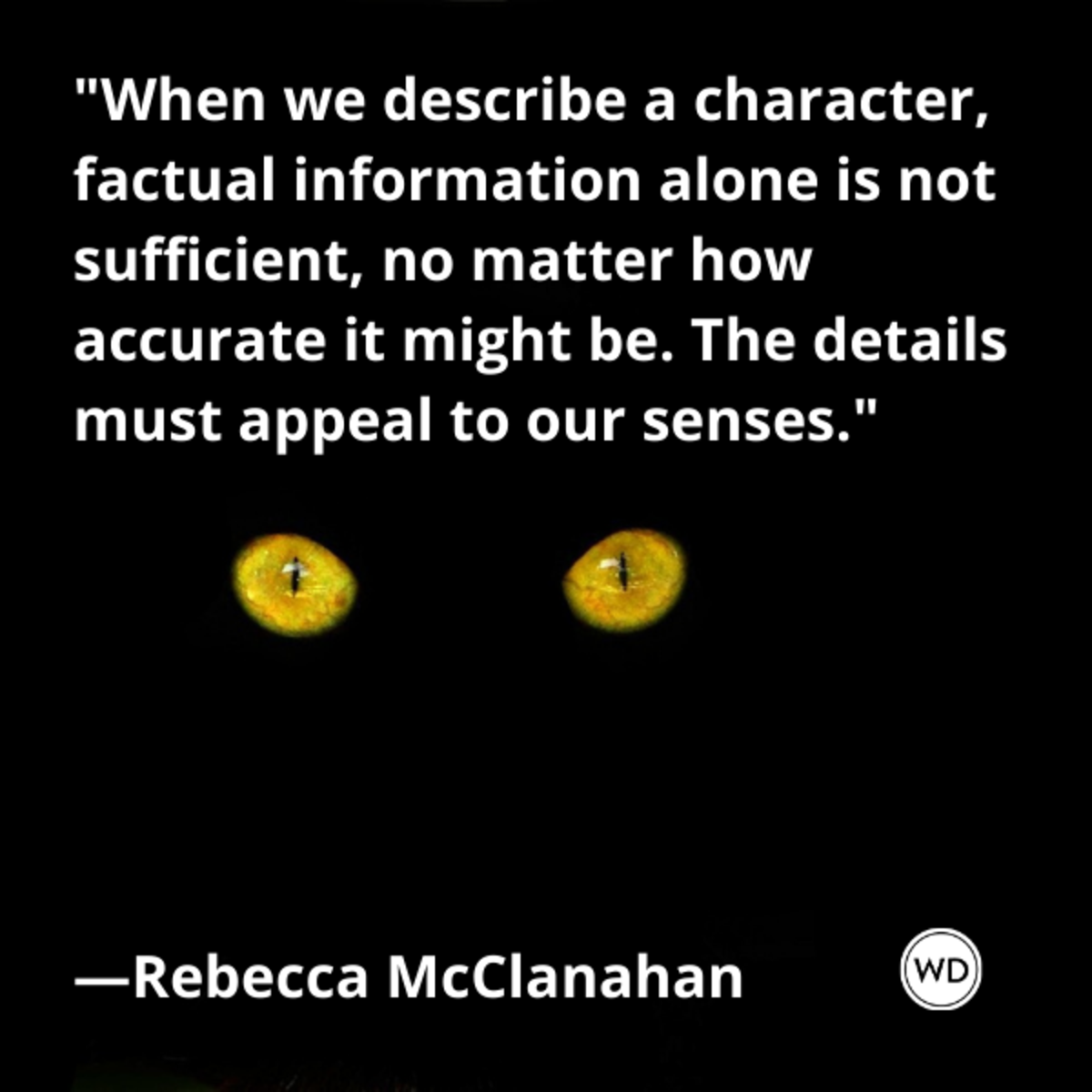 rebecca_mcclanahan_quotes_when_we_describe_a_character_factual_information_alone_is_not_sufficient