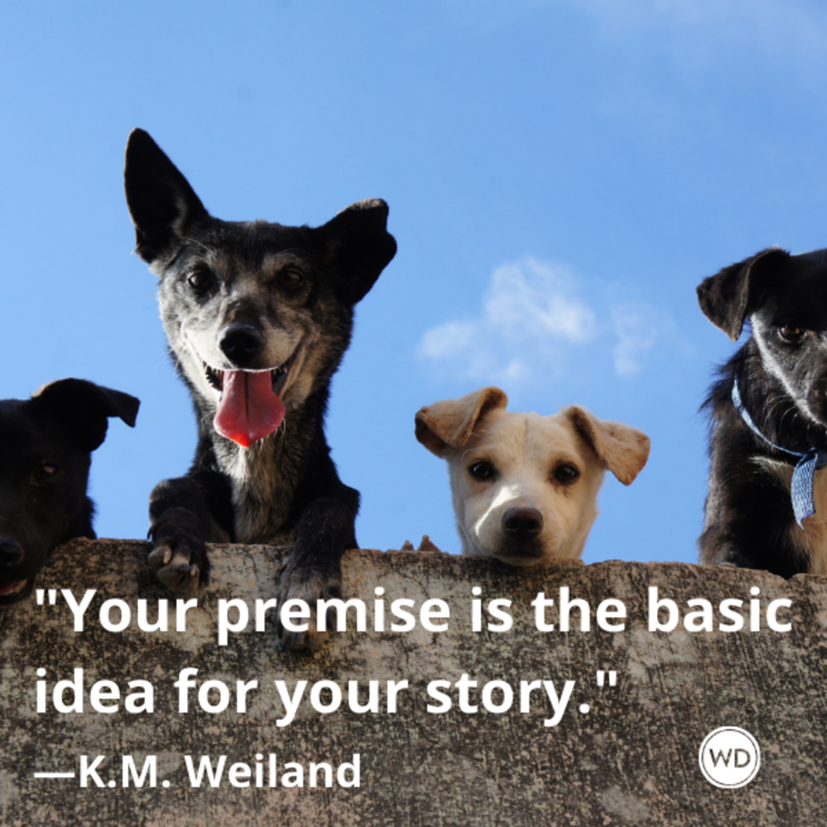 k_m_weiland_quotes_your_premise_is_the_basic_idea_for_your_story_writing_advice_with_dogs