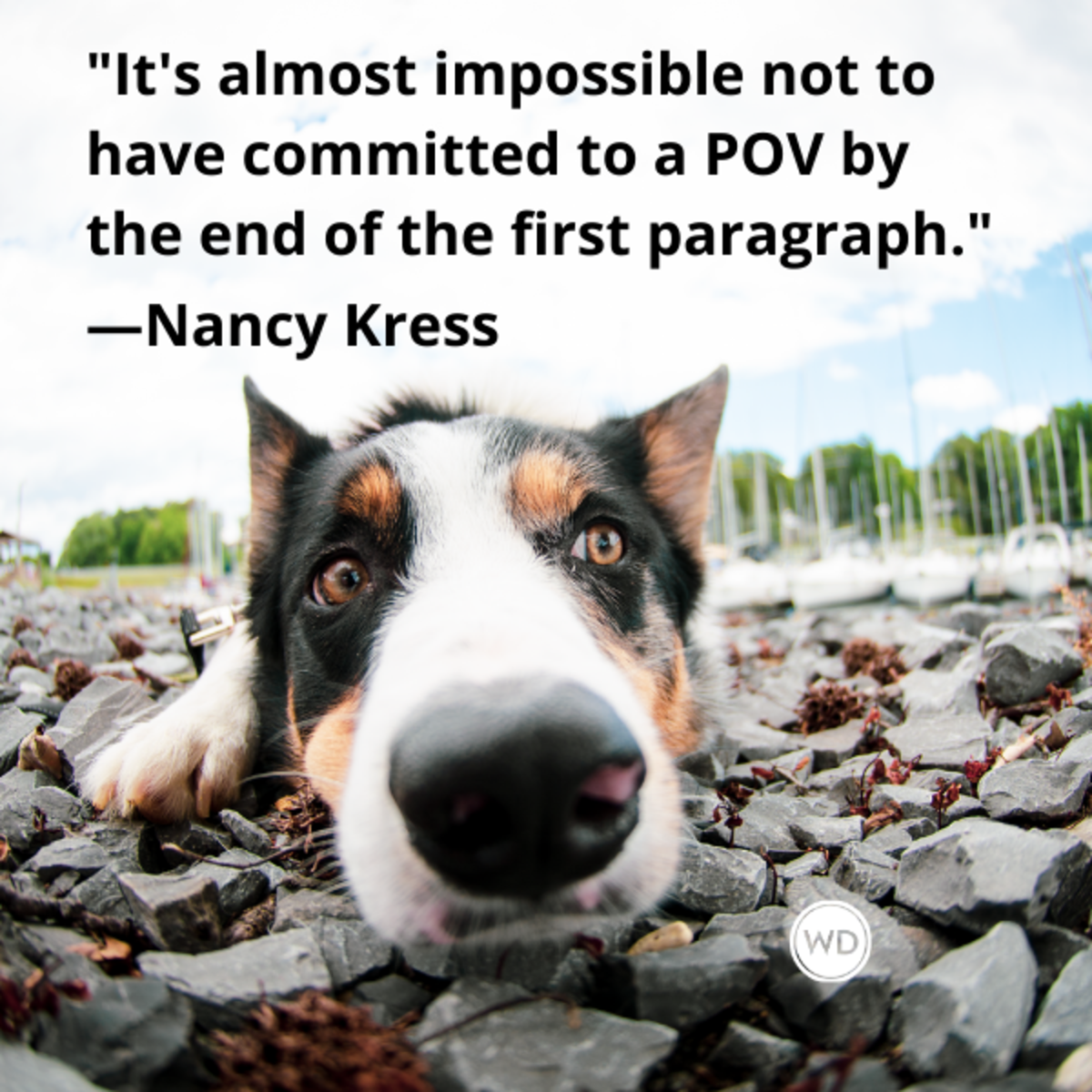 nancy_kress_quotes_its_almost_impossible_not_to_have_committed_to_a_pov_by_the_end_of_the_first_paragraph_writing_advice_with_dogs