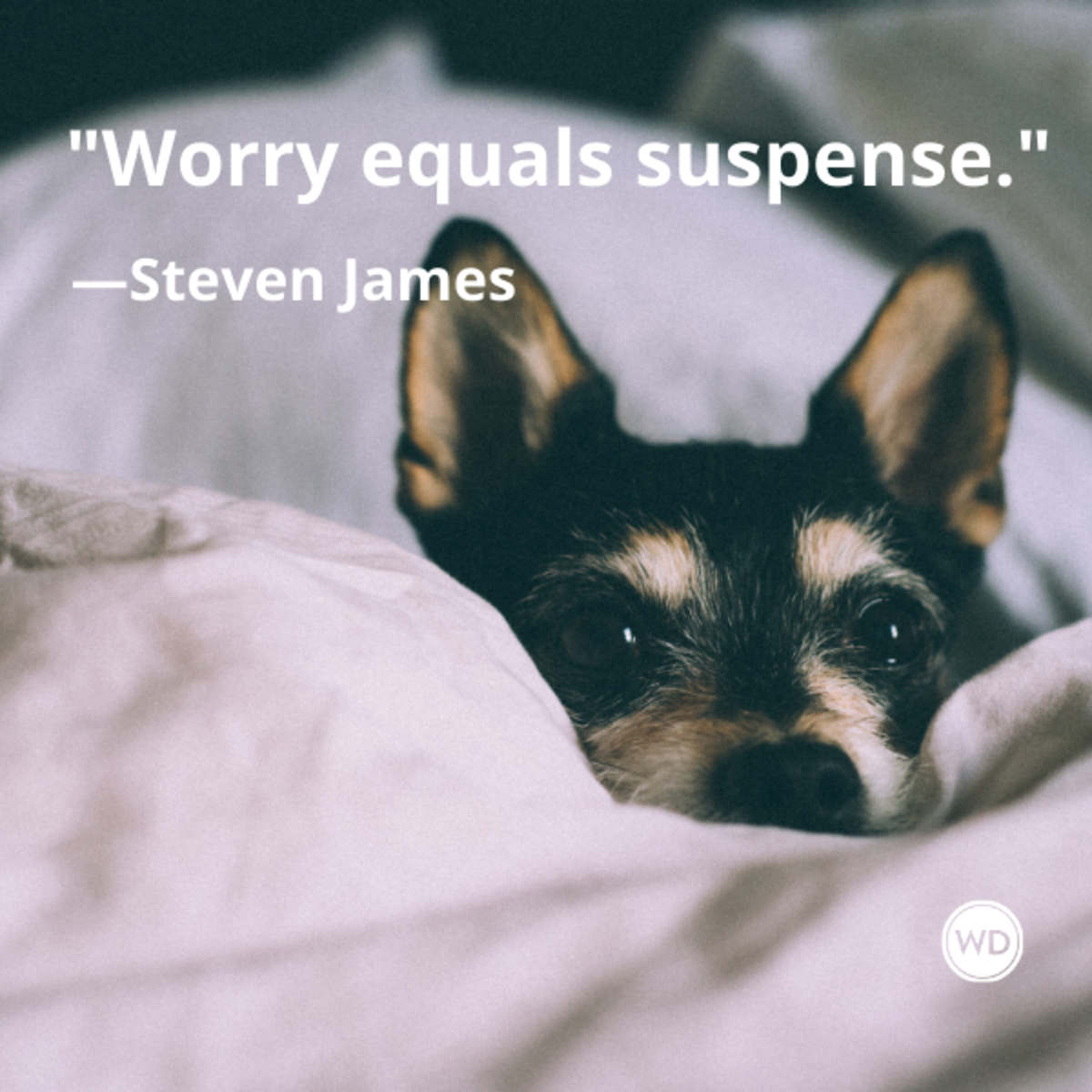 steven_james_quotes_worry_equals_suspense_writing_advice_with_dogs