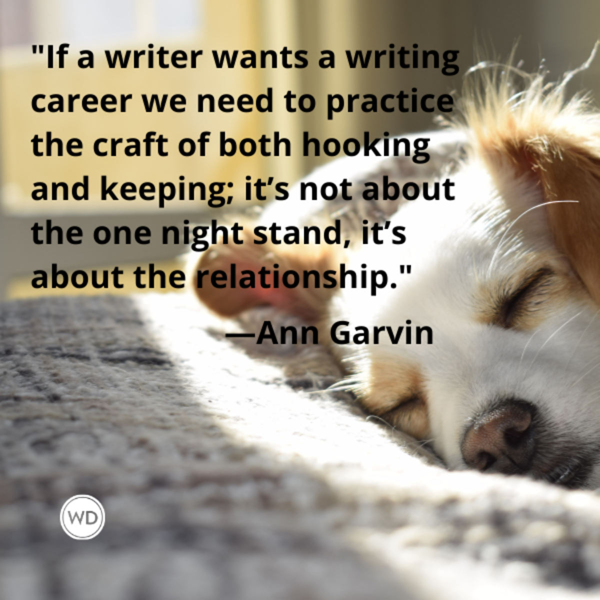 ann_garvin_quotes_if_a_writer_wants_a_writing_career_we_need_to_practice_the_craft_of_both_hooking_and_keeping_readers_writing_advice_with_dogs