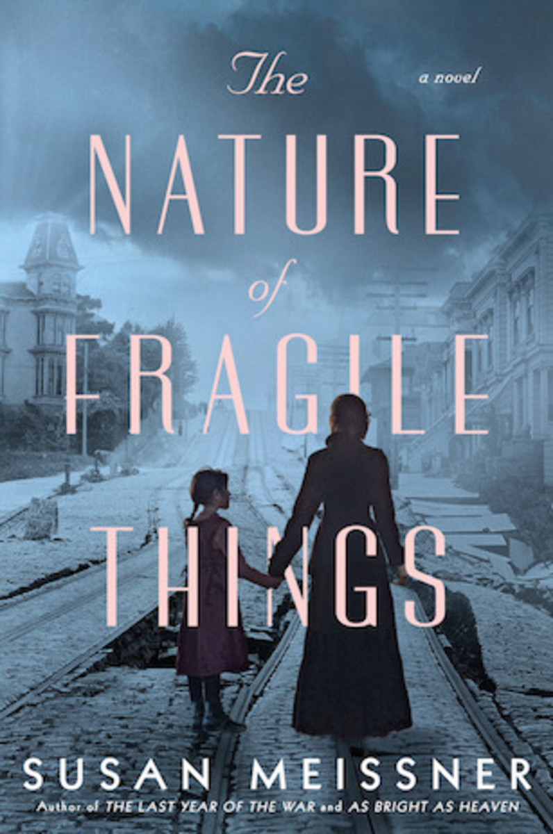 The Nature of Fragile Things, by Susan Meissner