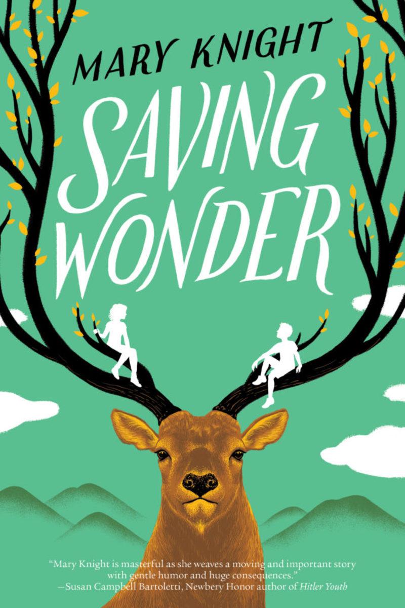 Saving-Wonder-book-cover