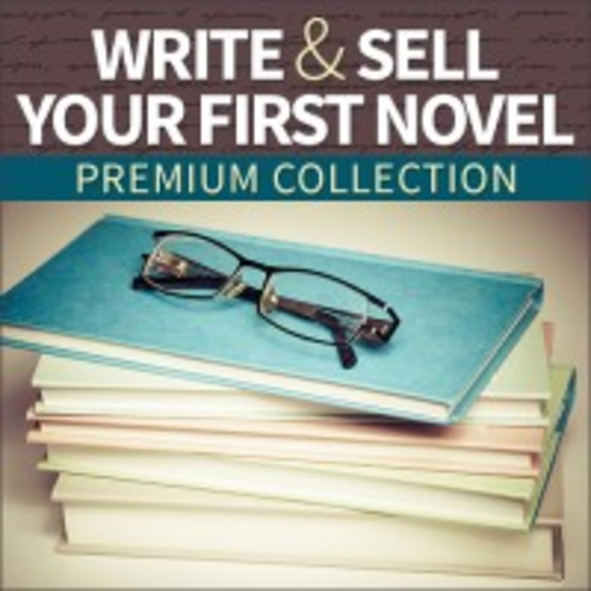 Write and Sell Your First Novel Premium Collection