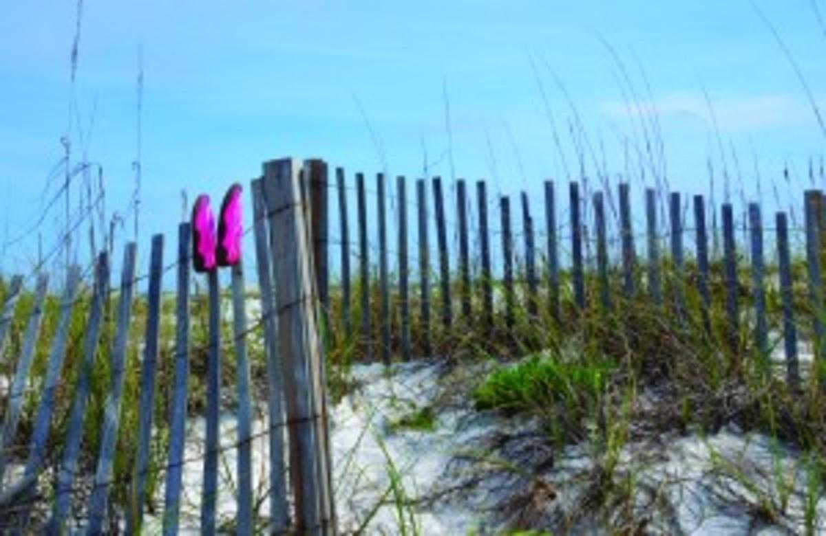 Beach swim shoes drying on wood fence on Florida Beach