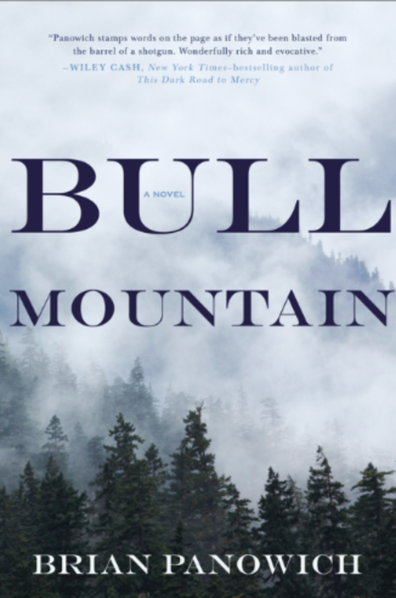 bull-mountain-novel-cover
