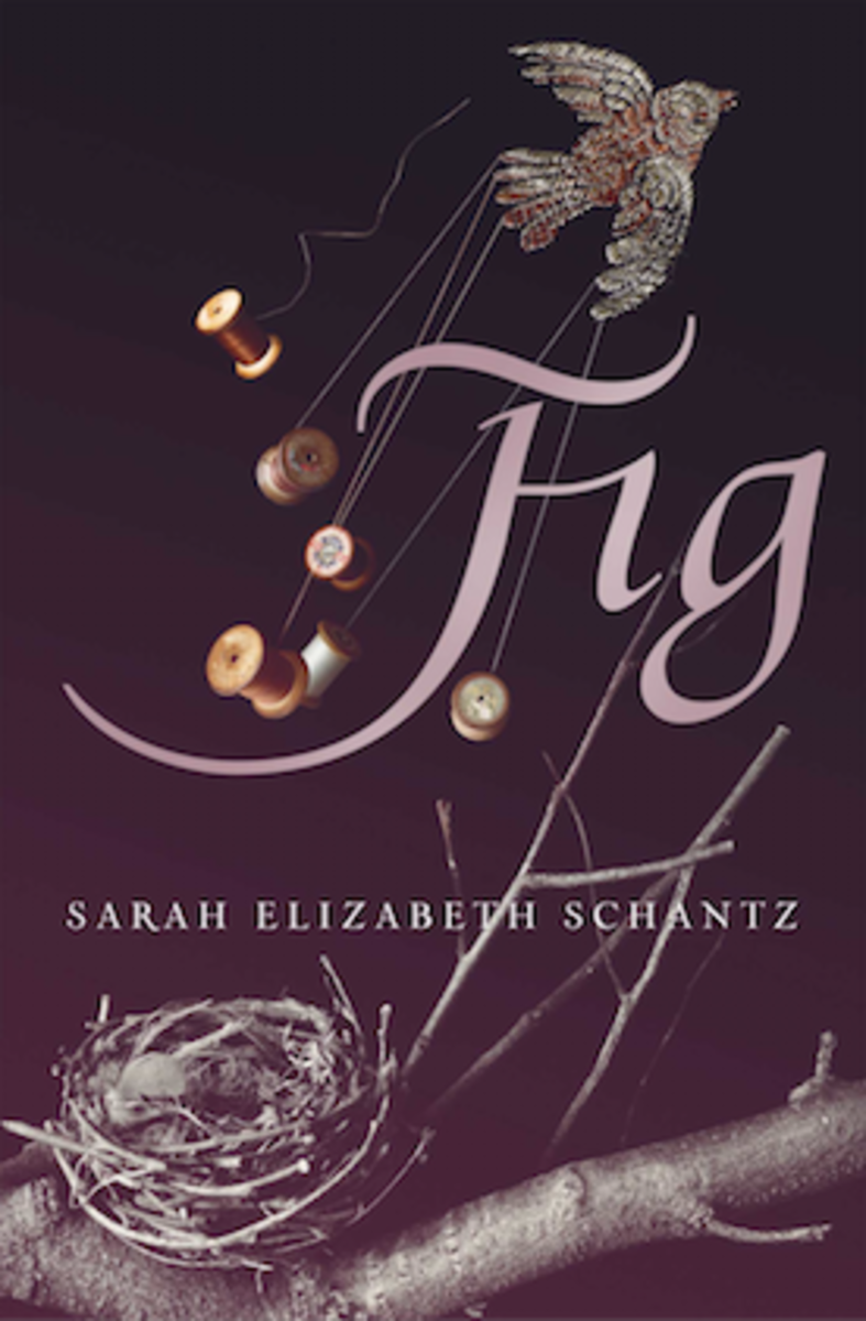 Fig-book-cover