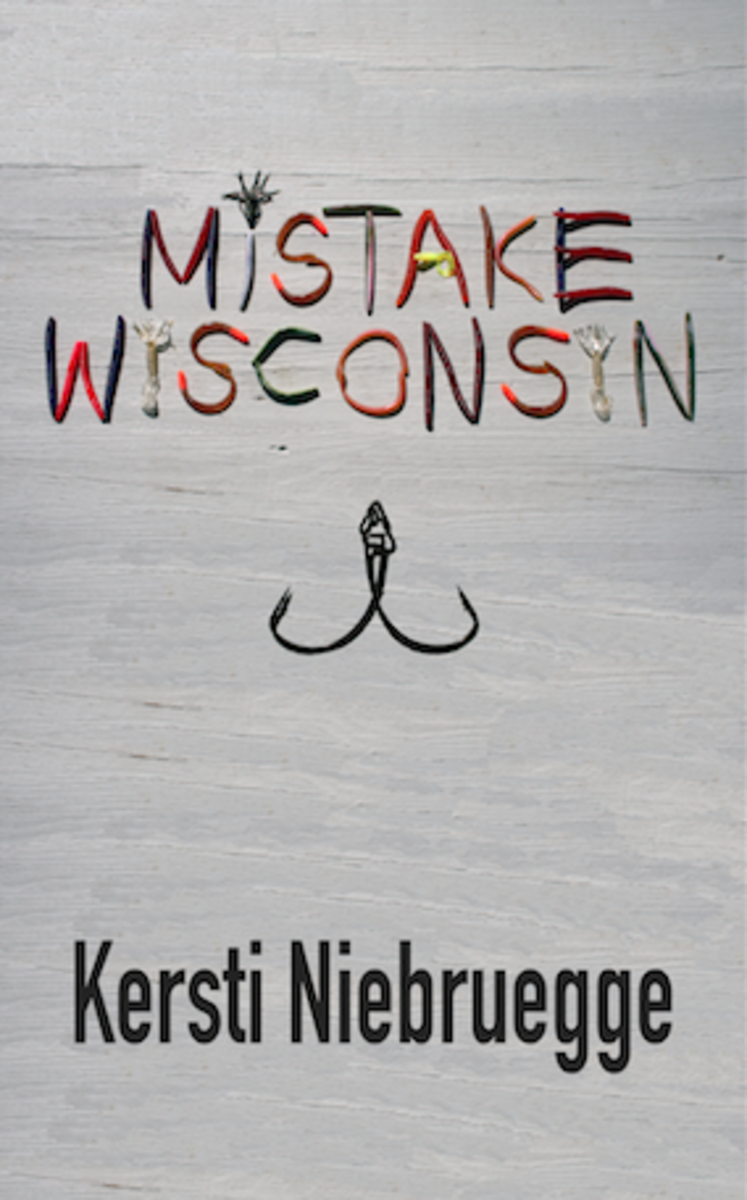 mistake-wisconsin-book-cover