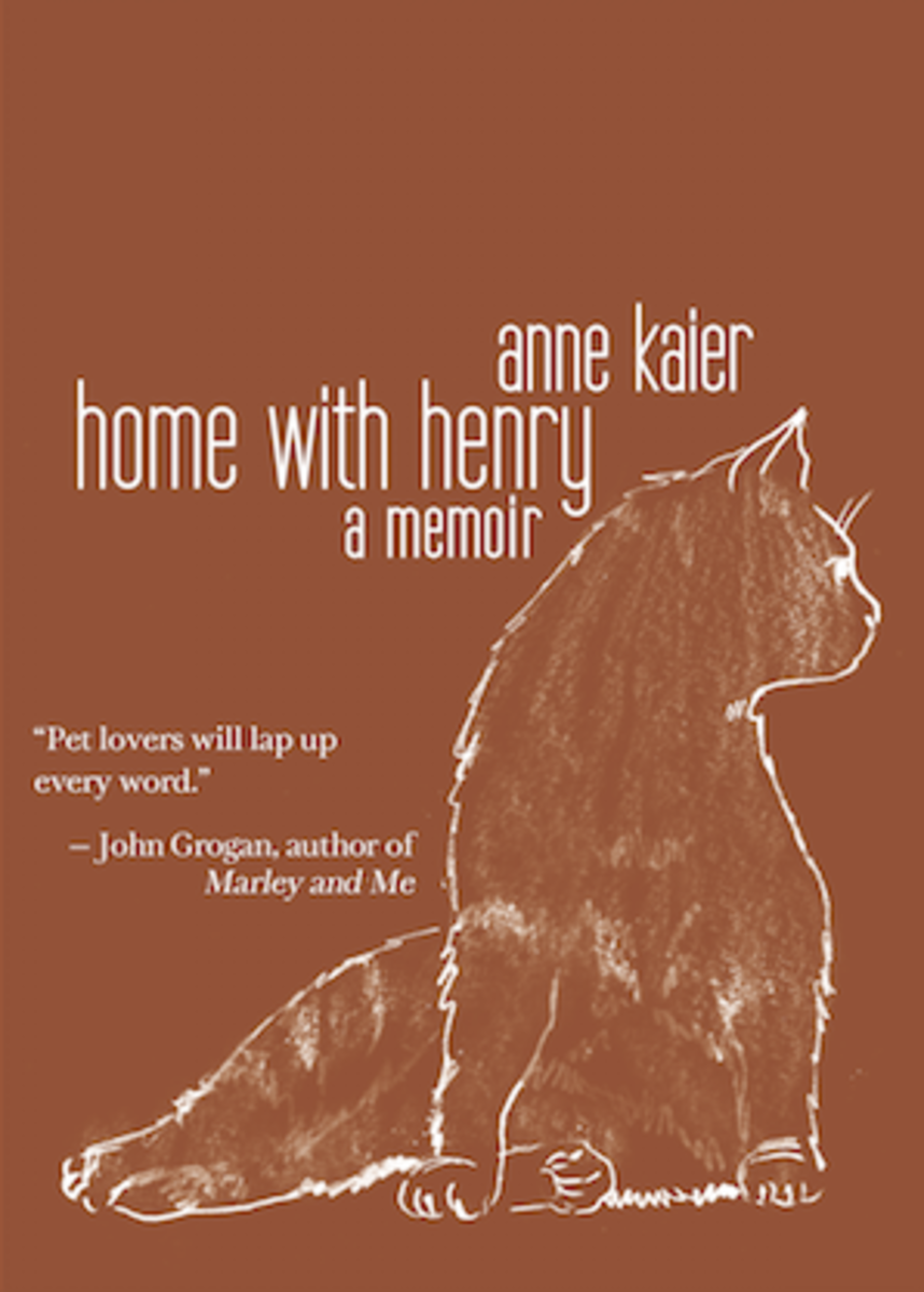 home-with-henry-book-cover