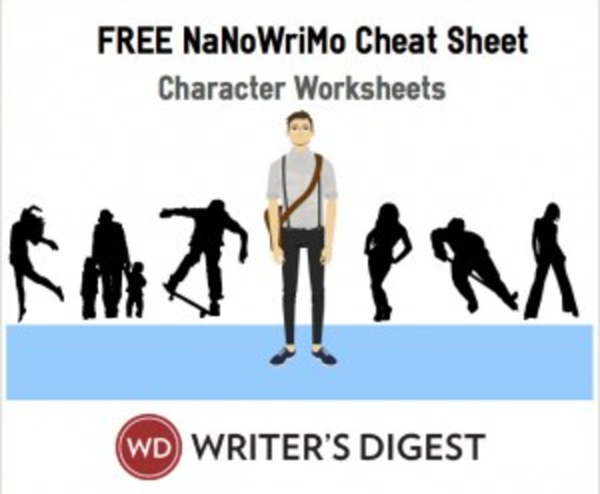 NaNoWriMo-CharacterWorkSheet-MEME