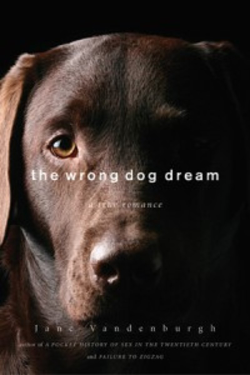 Wrong-Dog_catalogue-cover_SM