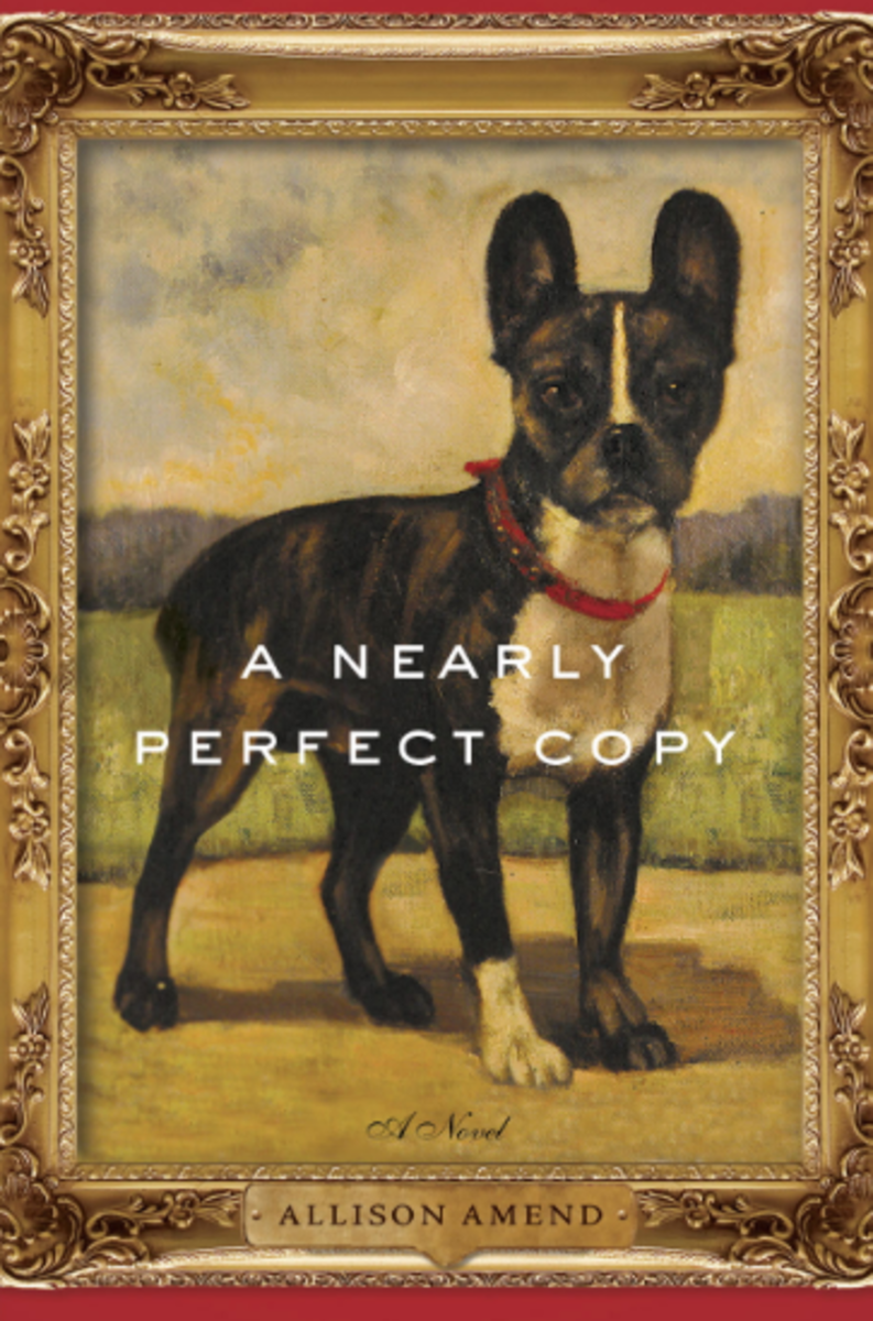 a-nearly-perfect-copy-book-cover