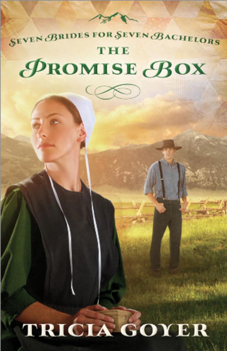the-promise-box-novel-cover