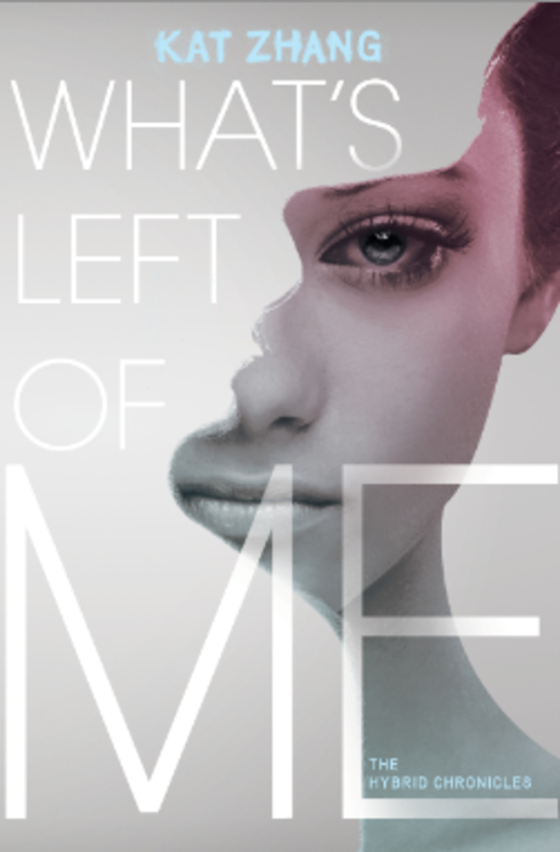 whats-left-of-me-novel