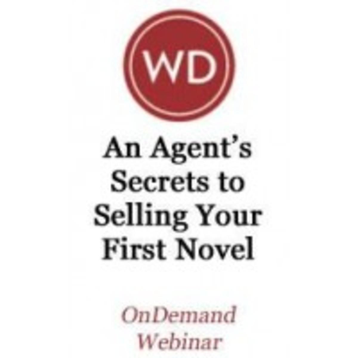 selling a novel | irene goodman